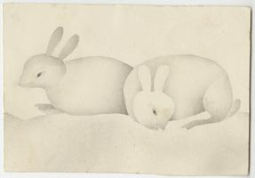 Two rabbits, drawn by Lucy Goodale, Class of 1841