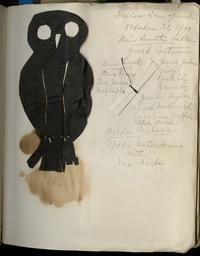 Notes and owl cutout from Halloween dinner and program in Wilder Hall parlors