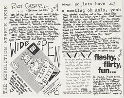 Revolution Girl Style Now! about the Riot Grrrl! organization