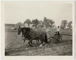 Farmerette behind a horse-drawn plow