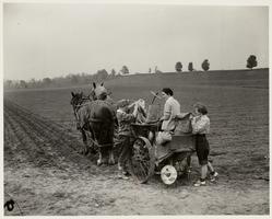 Farmerettes seeding a field with horses and cart