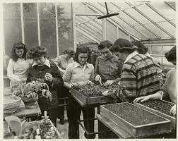 Farmerettes examining plants in Talcott Greenhouse