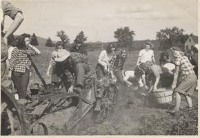Students Working in the 'Victory Garden', ca. 1943