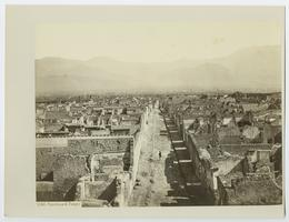 Panorama of excavated Pompei, from the travels of Charlotte and Mary A. C. Ely, Class of 1861