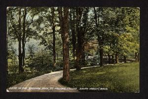 View of drive in Goodnow Park, Prospect Hill