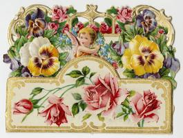 Cupid among pansies and roses