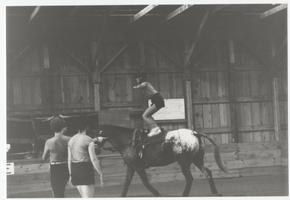 Student standing on horseback, riding in an indoor arena