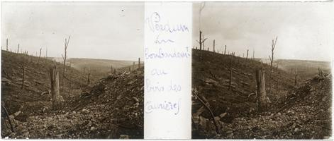 Bombing of a wood in Caurieres, Verdun