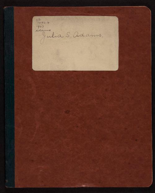 Diary of Julia Adams