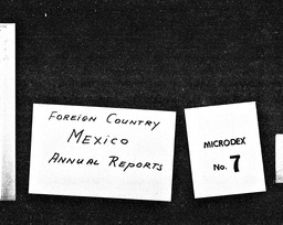 Mexico and Pakistan YWCA of the U.S.A. records, Record Group 11. Microfilmed headquarters files