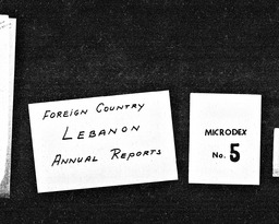 Lebanon YWCA of the U.S.A. records, Record Group 11. Microfilmed headquarters files