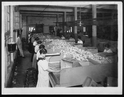 World War I: Women war workers, packaging YWCA of the U.S.A. photographic records